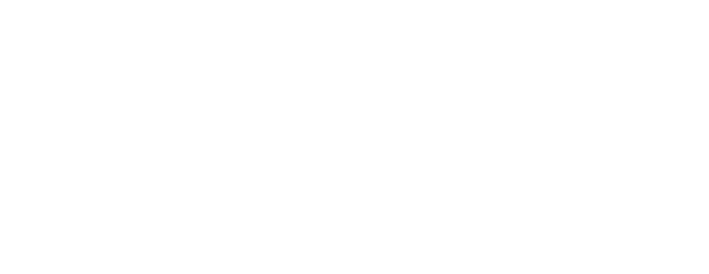 CAN-US TAX